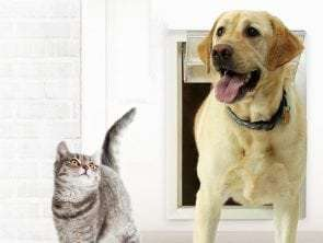 Why use a Pet Door