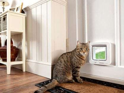 Microchipped doors for Cats