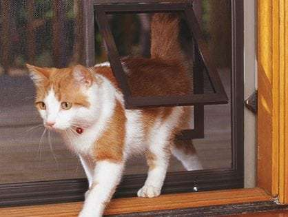 Cat doors for screens