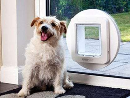Microchip Dog Doors
