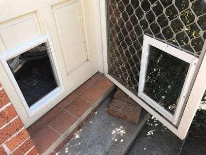 Dog Doors For Timber Sydney Wide Pet Doors