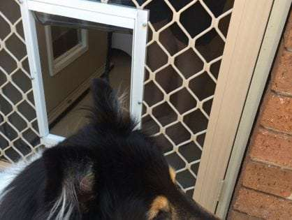 How to Install a Screen Door with a Dog Door