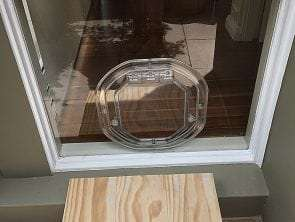 medium dog door for low panel glass door