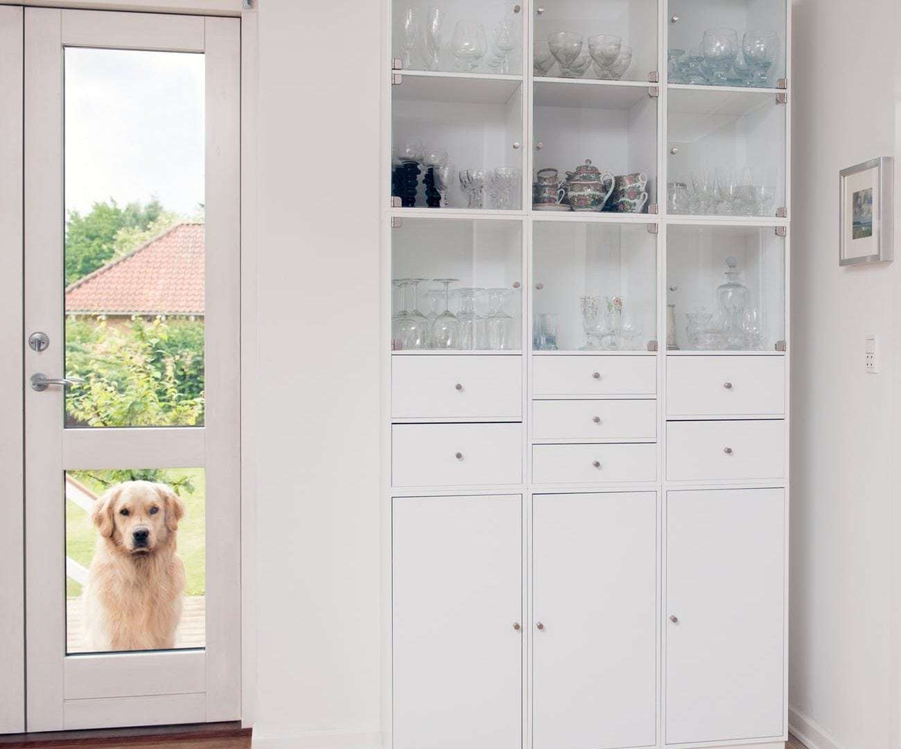 What are the Benefits of Using a Pet Door?