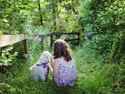 12 Best Dog Breeds for Kids and Families