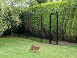 Cat Enclosures:Everything You Need to Know