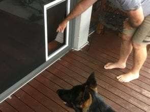 Extra large petdoor for screen door