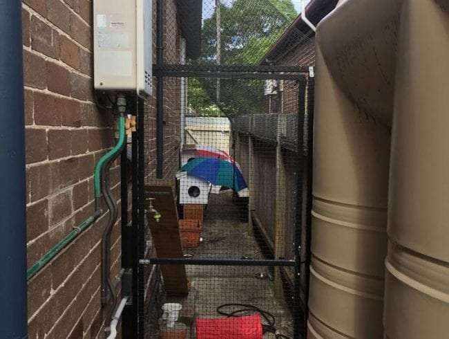 Side passage cat enclosures