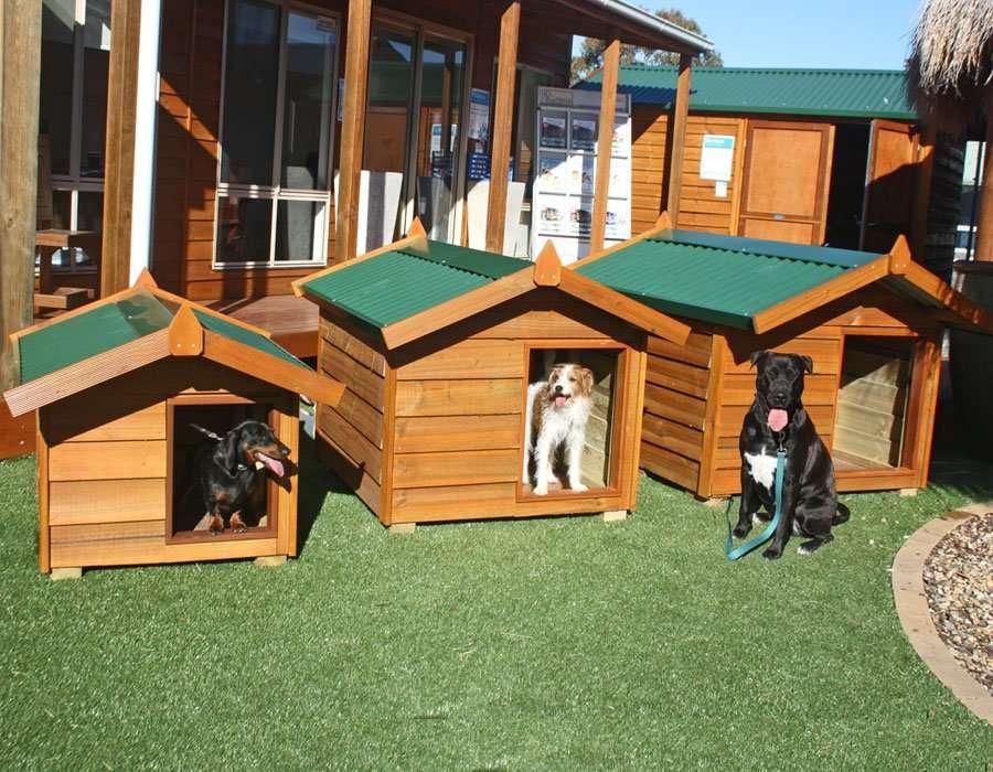dog sheds