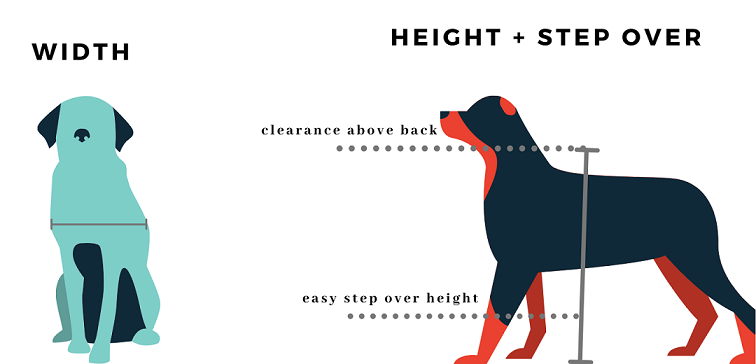 how to measure your dog for a dog flap